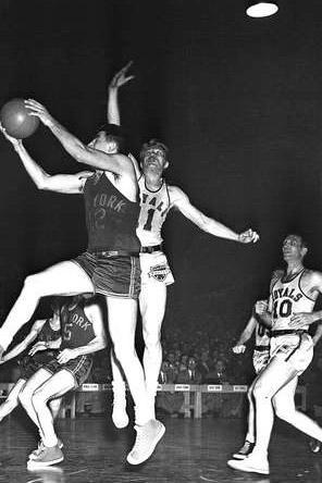 1952 Rochester Royals Season