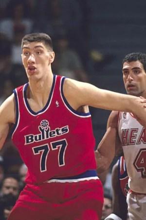1993-94 Washington Bullets Season