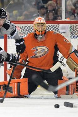 2013-14 Anaheim Ducks Season