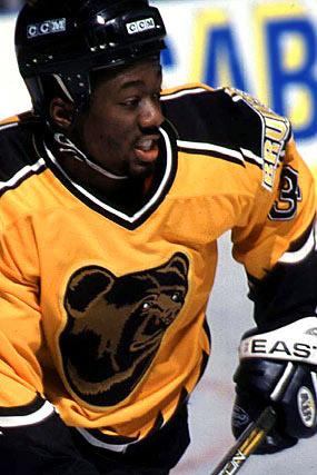 1996 Boston Bruins Season