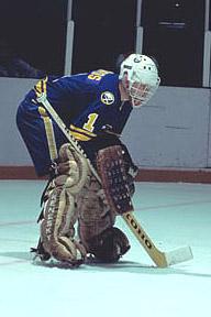 1978 Buffalo Sabres Season