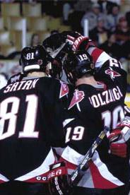 1998 Buffalo Sabres season