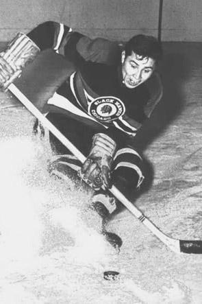 1953 Chicago Blackhawks season
