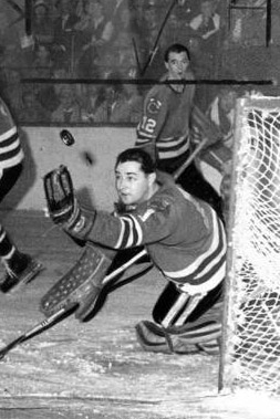 1959 Chicago Blackhawks Season