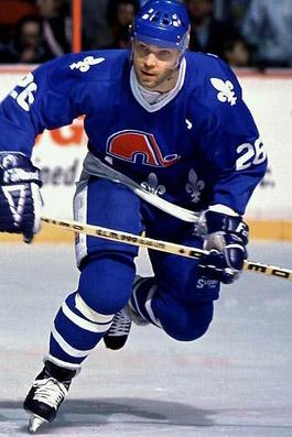 1988-89 Quebec Nordiques Season