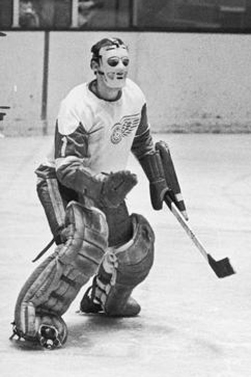 1964 Detroit Red Wings season
