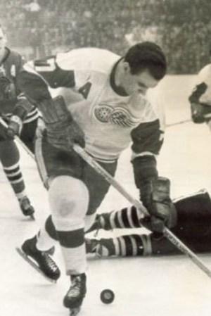1964-65 Detroit Red Wings Season