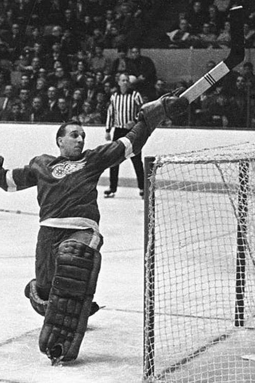 1966 Detroit Red Wings season