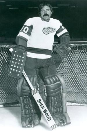 1973-74 Detroit Red Wings Season