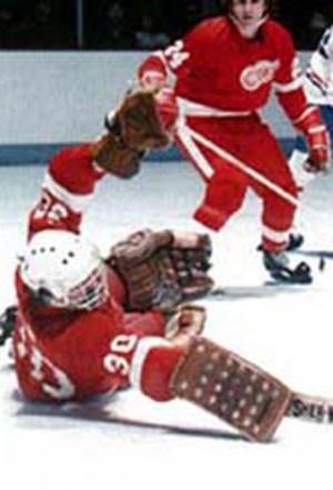 1976-77 Detroit Red Wings Season