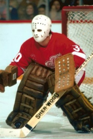 1980-81 Detroit Red Wings Season