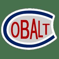 Cobalt Silver Kings Logo