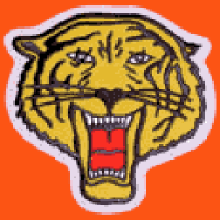 Rochester Tigers Logo