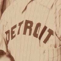 Detroit Wolverines Logo