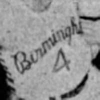 Birmingham Skyhawks Logo