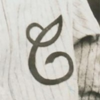 Cleveland Green Sox Logo