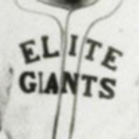 Nashville Elite Giants Logo