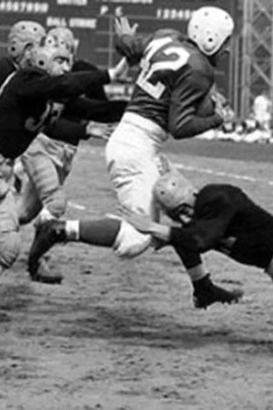 1931 Chicago Cardinals Season