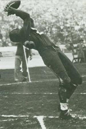 1946 Los Angeles Dons Season