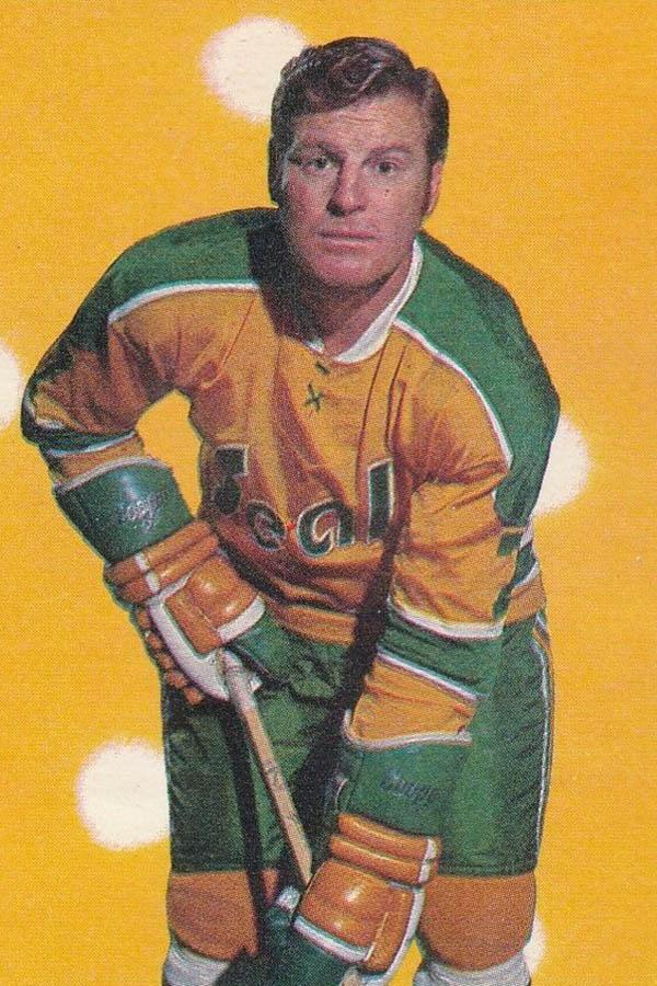 1971 California Golden Seals season