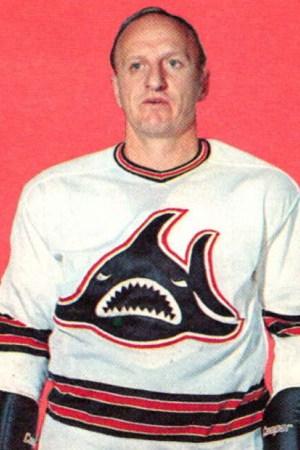 1972-73 Los Angeles Sharks Season