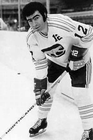 1972-73 Chicago Cougars Season