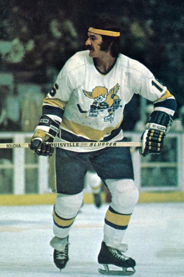 1976 Minnesota Fighting Saints season