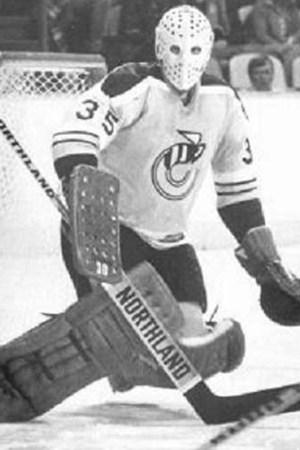 1976-77 Cincinnati Stingers Season