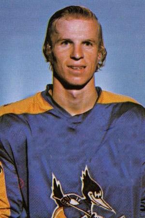 1976-77 Phoenix Roadrunners Season