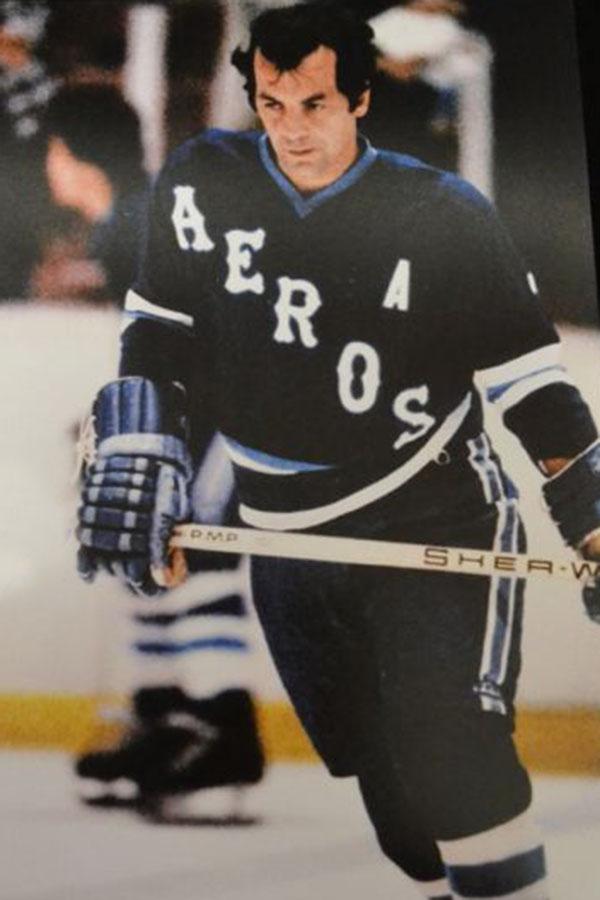 1978 Houston Aeros season