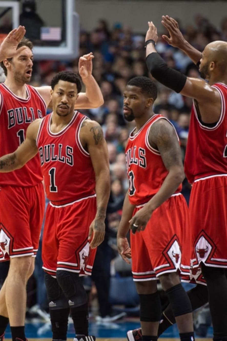 2015 Chicago Bulls season