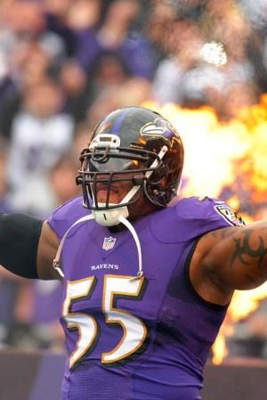 2014 Baltimore Ravens Season