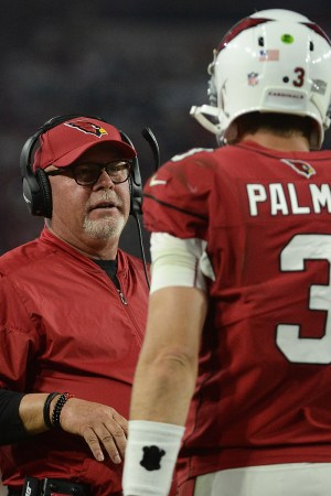 2015 Arizona Cardinals Season