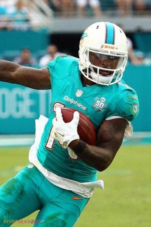 2015 Miami Dolphins Season