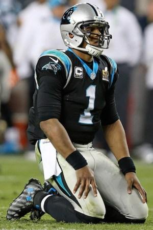 2016 Carolina Panthers Season