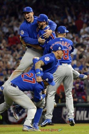 2016 Chicago Cubs Season