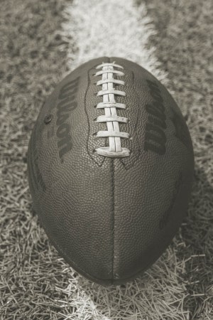 1924 Canton Bulldogs Season