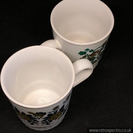 Staffordshire Potteries Mugs