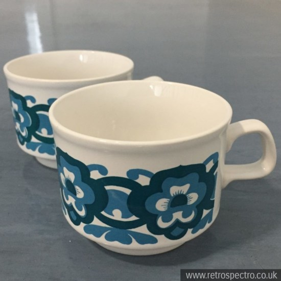 Staffordshire Potteries 70's Tea Cup