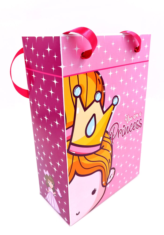 princess theme gift paper bag for return gifts