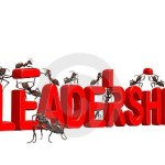 14 llamativos rasgos del liderazgo (que todos los grandes líderes tienen)