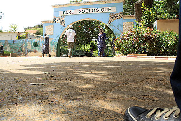 Parc-Zoologique-de-Hann_1