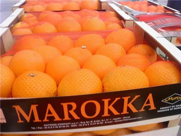 Le Maroc produit en moyenne 1,3 million tonnes d'agrumes chaque année dont 530 000 réservées à l'export