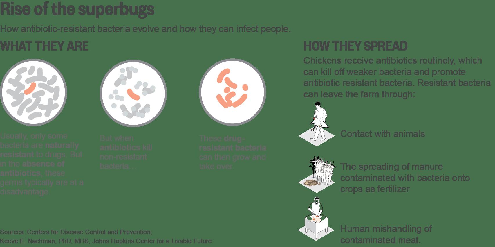 Farmaceuticals Vets Face Pressures To Prescribe