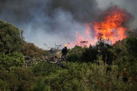 Table Mountain Wildfire Threatens Forces University of Cape Town to Evacuate