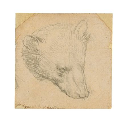 Da Vinci's 'Head of Bear' Drawing Seen Fetching Up to $16M at July Auction