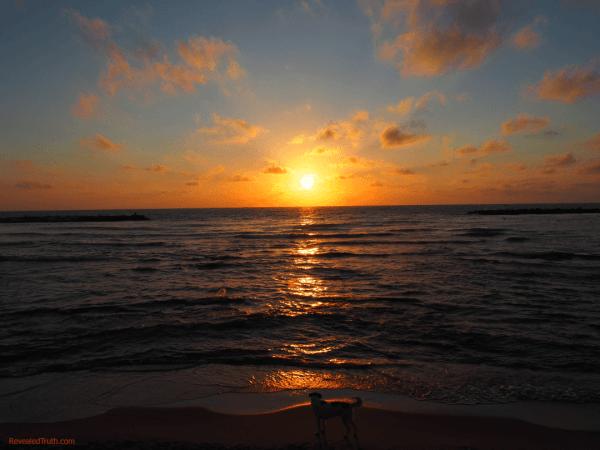 Sunset over the Med