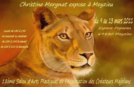 affiche expo Meyzieu 2