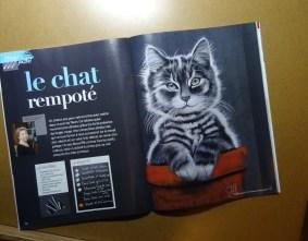 """démo du """"chat rempoté"""" parue dans le n° 59 de """"Plaisir de peindre"""" du 13/11/2015"""