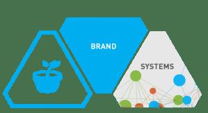 Brand Development